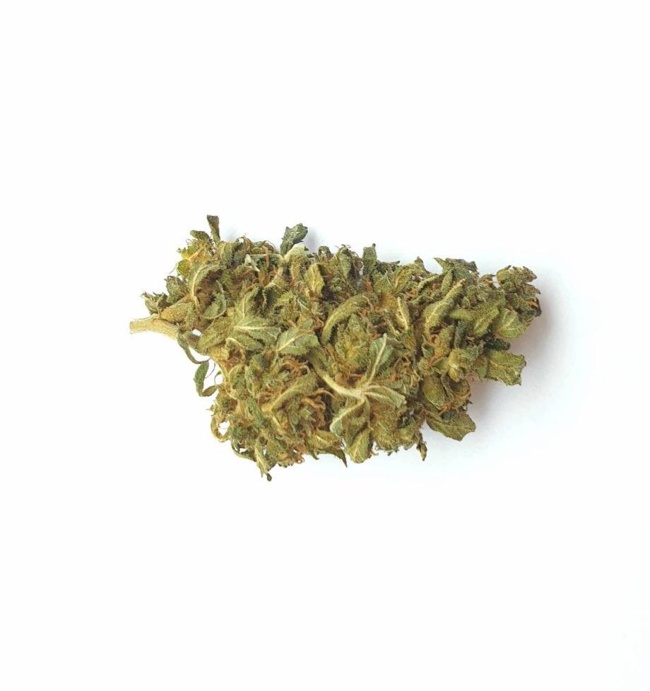 Mango Haze CBD Bud