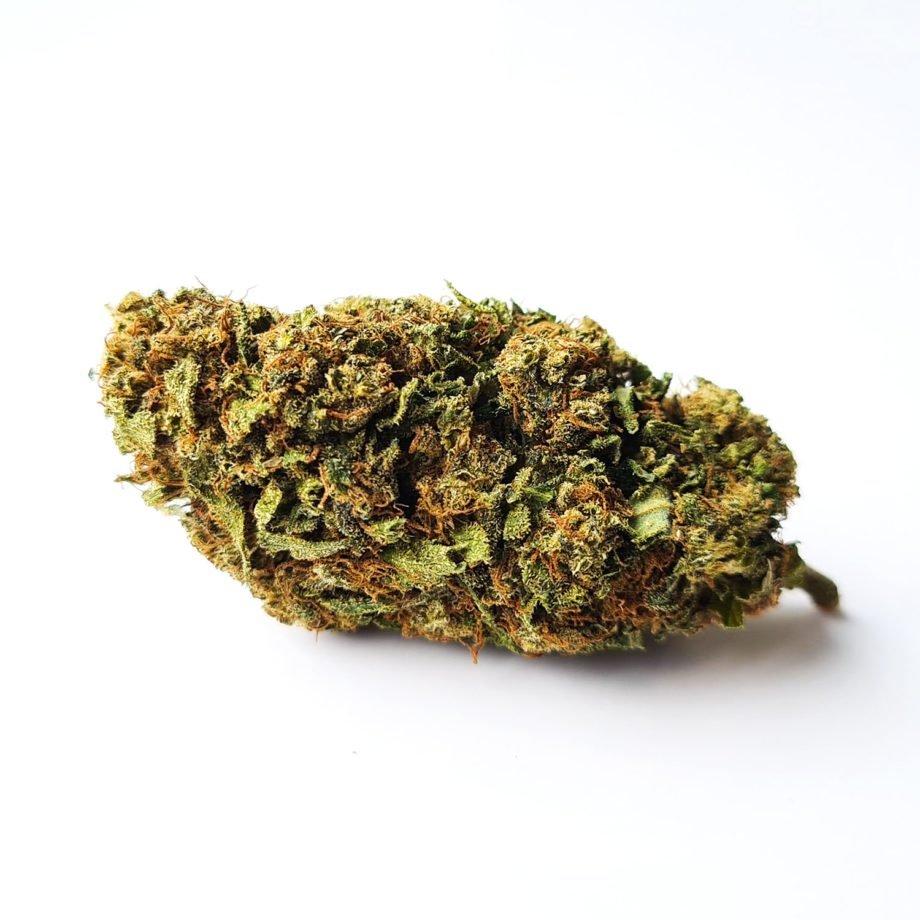 Mango CBD Bud